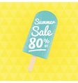Summer Sale 80 per cent off vector image vector image