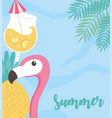 summer time vacation tourism flamingo cocktail sea vector image