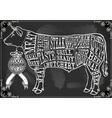 Vintage Blackboard Cut of Beef vector image