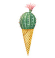 watercolor cactus in a waffle cone isolated vector image vector image