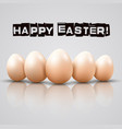 easter of chicken eggs on white background vector image