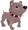 beautiful gray dog on a white background vector image vector image
