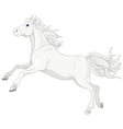 Beautiful white horse vector image vector image