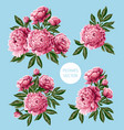 bouquet with pink peonies flowers vector image vector image