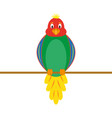 multi-colored funny parrot vector image