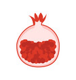 pomegranate garnet icon vector image vector image