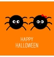Spider insect family couple Boy Girl Halloween vector image vector image