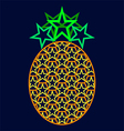 Starry pineapple vector image vector image