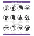 symptoms and transmission dengue fever vector image vector image