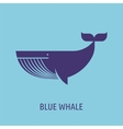 whale icon on blue baground vector image vector image