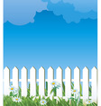 white fence and daise vector image vector image