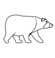 wild bear cartoon vector image