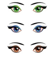 Cartoon female eyes vector image vector image