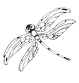 Dragonflie Hand drawn graphic in vector image vector image