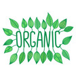 green organic sign in with growing leaves vector image vector image