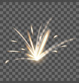 realistic detailed 3d blazing fire spark on a vector image vector image