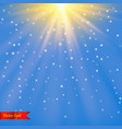 realistic light vector image vector image
