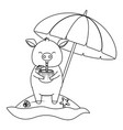 cute animal enjoying summer time cartoon vector image vector image