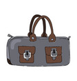 ladys bag vector image