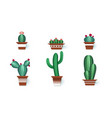 paper cactuses cute interior home decor vector image vector image
