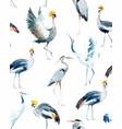 watercolor african crane pattern vector image