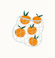 juicy mandarins in reusable mesh shopping bag vector image vector image