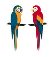 macaw parrot icon in flat style vector image