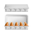 realistic 3d detailed eggs tray set vector image