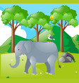 scene with elephant and bird in the field vector image vector image