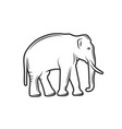 silhouette an elephant isolated on white vector image