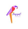 tropical bird sign vector image vector image