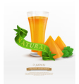 background with slices of pumpkin and green ribbon vector image vector image