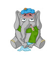 elephant character sick cartoon vector image vector image