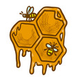 honeycomb icon hand drawn style vector image vector image