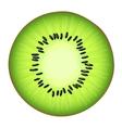 juicy half kiwi vector image vector image
