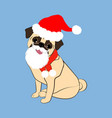 pug dog in christmas costume vector image vector image