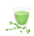 A Glass of Green Tea with Green Leaves vector image vector image