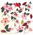 beautiful collection of flowers vector image