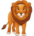 cartoon lion mascot isolated on white background vector image
