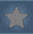 jeans star with spangles vector image vector image