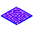 labyrinth maze game vector image