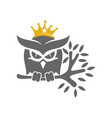 owl crown trunk logo design template isolated vector image