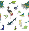 realistic hand drawn colorful seamless pattern of vector image vector image
