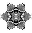 stylish mandala with zebra pattern vector image