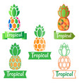 tropical logo symbol pineapple vector image vector image
