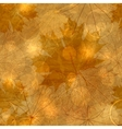 Autumnal Leaves Pattern vector image