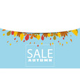 banner for autumn sale background with falling vector image vector image