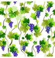Blue grapes pattern vector image vector image