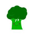 broccoli icon flat sign vector image