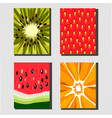 fruit posters vector image